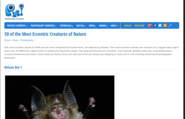 http://www.pxleyes.com/blog/2011/05/50-of-the-most-eccentric-creatures-of-nature/
