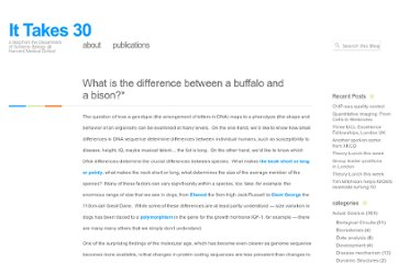 http://ittakes30.wordpress.com/2011/05/05/what-is-the-difference-between-a-buffalo-and-a-bison/