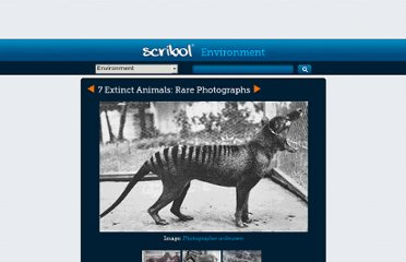http://www.environmentalgraffiti.com/featured/rare-photographs-now-extinct-beasts/14727