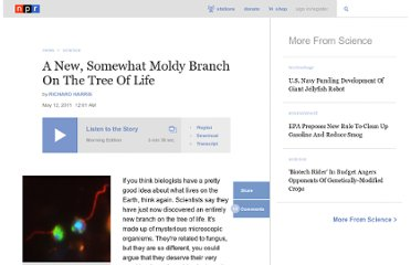 http://www.npr.org/2011/05/12/136207874/a-new-somewhat-moldy-branch-on-the-tree-of-life