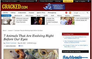 http://www.cracked.com/article_19213_7-animals-that-are-evolving-right-before-our-eyes.html