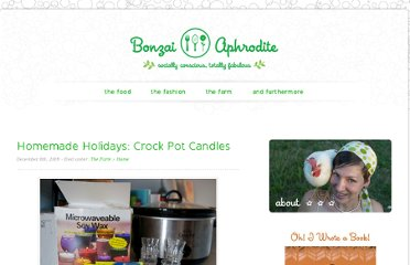 http://bonzaiaphrodite.com/2009/12/homemade-holidays-crock-pot-candles/