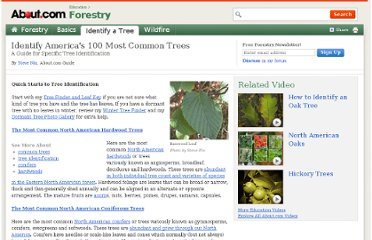 http://forestry.about.com/cs/treeid/a/100_trees_id.htm
