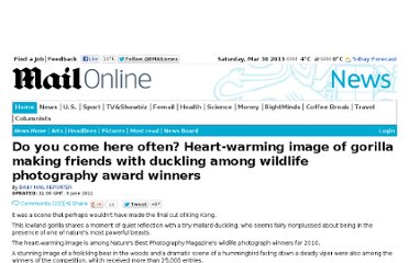 http://www.dailymail.co.uk/news/article-2001152/Wildlife-photography-award-winners-Gorilla-makes-friends-duckling.html