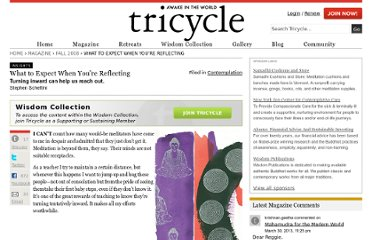 http://www.tricycle.com/insights/what-expect-when-you%E2%80%99re-reflecting