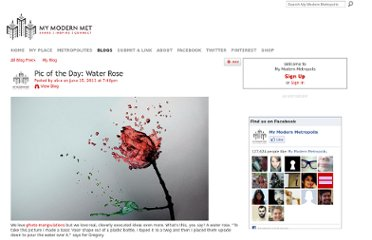 http://www.mymodernmet.com/profiles/blogs/pic-of-the-day-water-rose