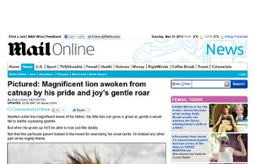 http://www.dailymail.co.uk/news/article-1247198/My-pride-joy-Young-lion-wakes-sleeping-father-gentle-growl.html
