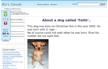 http://www.binscorner.com/pages/a/about-a-dog-called-faith.html