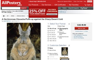 http://www.allposters.com/-sp/A-Herbivorous-Viscacha-Puffs-up-against-the-Sharp-Desert-Cold-Posters_i3931113_.htm