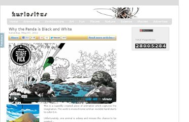 http://www.kuriositas.com/2011/05/why-panda-is-black-and-white.html