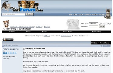 http://www.catforum.com/forum/37-behavior/77314-kitty-trying-bury-his-food.html