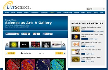 http://www.livescience.com/14758-science-art-gallery-imaging.html