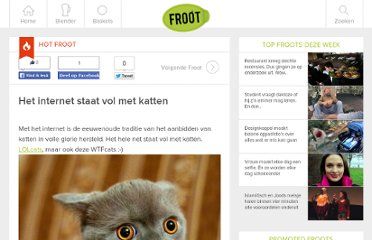 http://www.froot.nl/categorie/entertainment/het-internet-staat-vol-met-katten/