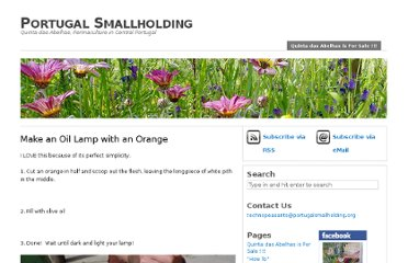 http://www.portugalsmallholding.org/how-to/make-an-oil-lamp-with-an-orange/