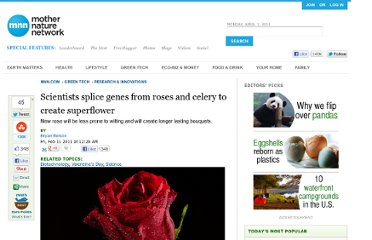 http://www.mnn.com/green-tech/research-innovations/stories/scientists-splice-genes-from-roses-and-celery-to-create-supe