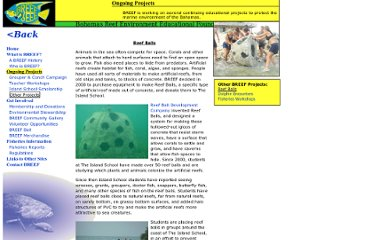 http://www.artificialreefs.org/Articles/BREEF%20--%20Bahamas%20Reef%20Environment%20Educational%20Foundation.htm