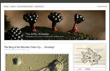 http://theartfulamoeba.com/2011/01/26/the-borg-of-the-microbes-takes-up-farming/