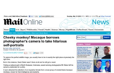 http://www.dailymail.co.uk/news/article-2011051/Black-macaque-takes-self-portrait-Monkey-borrows-photographers-camera.html