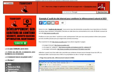 http://www.tubbydev.com/2009/11/exemple-audit-de-site-internet-pour-ameliorer-le-referencement-naturel-et-seo.html