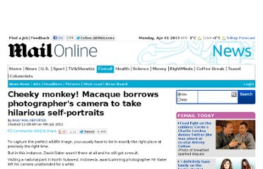http://www.dailymail.co.uk/news/article-2011051/Black-macaque-takes-self-portrait-Monkey-borrows-photographers-camera.html#ixzz1RDmzz8ae