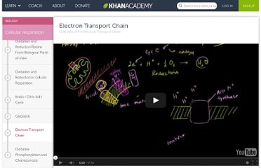 http://www.khanacademy.org/video/electron-transport-chain?playlist=Biology