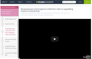 http://www.khanacademy.org/video/tropomyosin-and-troponin-and-their-role-in-regulating-muscle-contraction?playlist=Biology
