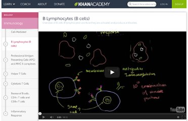 http://www.khanacademy.org/video/b-lymphocytes--b-cells?playlist=Biology