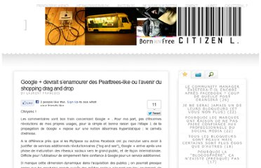 http://citizenl.fr/2011/07/google-devrait-senamourer-des-pearltrees-like-ou-lavenir-du-shopping-drag-and-drop/