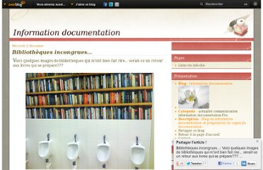 http://info-doc.over-blog.com/article-bibliotheques-incongrues--40448163.html
