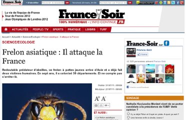 http://www.francesoir.fr/actualite/scienceecologie/frelon-asiatique-il-attaque-france-120542.html