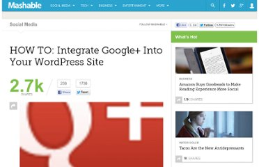 http://mashable.com/2011/07/22/wordpress-google-plus/
