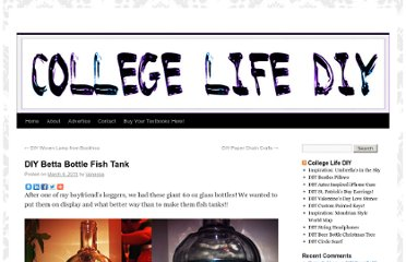 http://collegelifediy.com/2011/03/09/diy-betta-bottle-fish-tank/#more-20