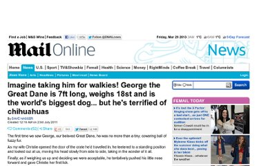 http://www.dailymail.co.uk/news/article-2017884/Biggest-dog-world-Meet-George-7ft-long-Great-Dane--whos-terrified-chihuahuas.html