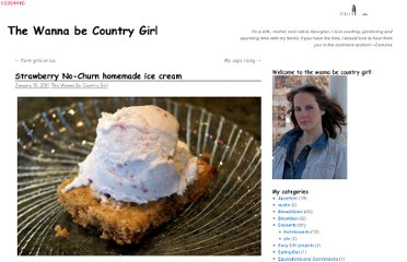 http://thewannabecountrygirl.com/no-churn-homemade-icecream/