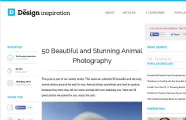 http://thedesigninspiration.com/articles/50-beautiful-and-stunning-animal-photography