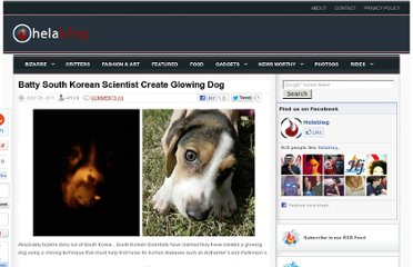 http://helablog.com/2011/07/batty-south-korean-scientist-create-glowing-dog/
