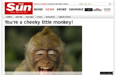 http://www.thesun.co.uk/sol/homepage/news/3722784/Youre-a-cheeky-little-monkey.html