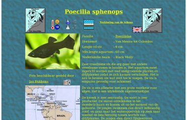 http://aquavisie.retry.org/Database/Vissen/Poecilia_sphenops.html