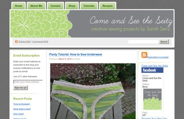 http://comeandseetheseitz.com/2010/03/09/panty-tutorial-how-to-sew-underwear/