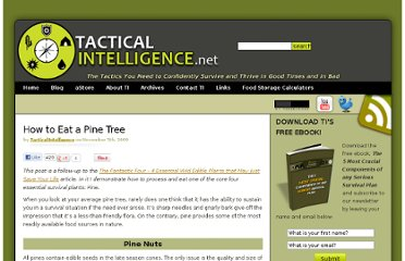 http://www.tacticalintelligence.net/blog/how-to-eat-a-pine-tree.htm