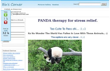 http://www.binscorner.com/pages/p/panda-therapy-for-stress-relief-take-car.html