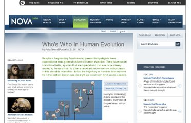 http://www.pbs.org/wgbh/nova/evolution/whos-who-human-evolution.html