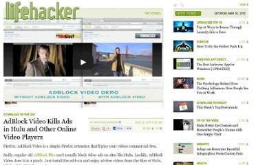 http://lifehacker.com/5833052/adblockvideo-blocks-ads-in-hulu-and-other-online-video-players