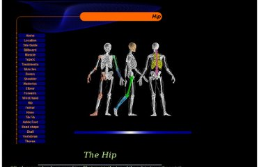 http://www.pediatric-orthopedics.com/Topics/Bones/Hip/hip.html