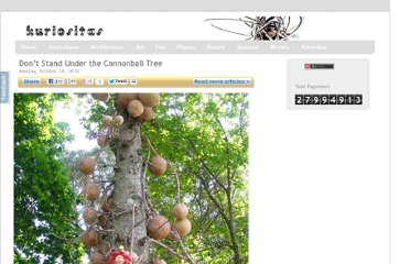 http://www.kuriositas.com/2010/10/dont-stand-under-cannonball-tree.html