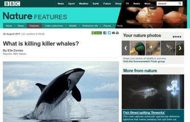 http://www.bbc.co.uk/nature/14663732
