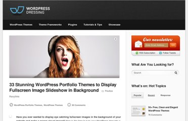 http://wpdressing.com/stunning-wordpress-portfolio-themes-to-display-fullscreen-image-slideshow-in-background/