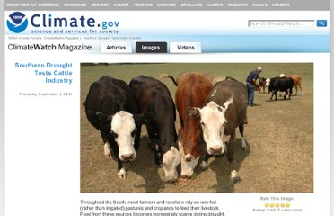 http://www.climatewatch.noaa.gov/image/2011/southern-drought-tests-cattle-industry