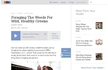 http://www.npr.org/2011/04/18/135412640/foraging-the-weeds-for-wild-healthy-greens