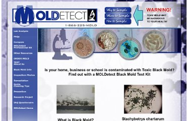 http://moldetect.com/black-mold.htm
